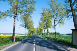 郊外の道路
